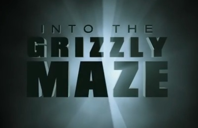 Into the Grizzly Maze stars James Marsden, Scott Glenn, Piper Perabo, Thomas Jane, Billy Bob Thornton, Adam Beach, Michaela McManus, Patrick Sabongui, Luisa D'Oliveira, Sarah Desjardins, and Kelly Curran.
