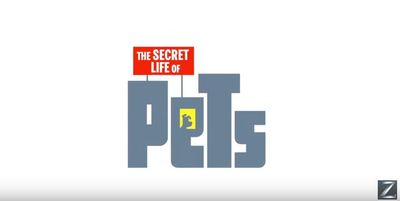 The Secret Life of Pets Louis C.K. Eric Stonestreet Kevin Hart Steve Coogan Ellie Kemper animation movie film trailer kids children cinema animals cute cartoon