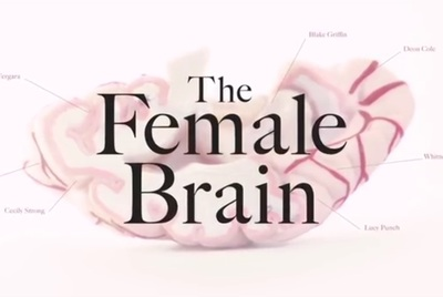 The Female Brain stars Toby Kebbell, Sofía Vergara, Jane Seymour, Beanie Feldstein, Ben Platt, Cecily Strong, Whitney Cummings, Will Sasso, and Angel Parker.